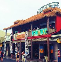 Sharkeez Tiki Bar