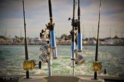 Linda D Sportfishing
