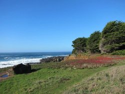 Cobbler's Walk Mendocino