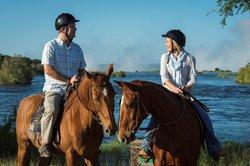 Victoria Falls Horse Safaris