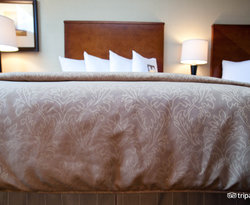 The Deluxe Two Double Beds at the Omni Houston Hotel at Westside
