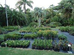 Cruzan Gardens