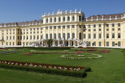 Discover Vienna Tours