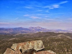 Prescott National Forest