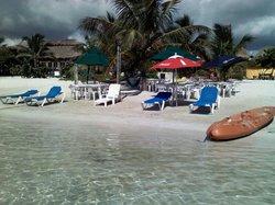 Caribbean's life