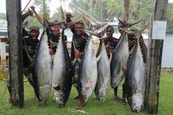 Freedive Fiji Charters - Day Trips