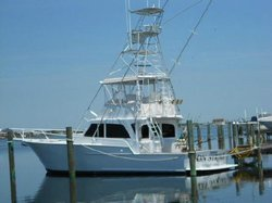Captain Ron's Charters - Day Tours