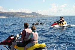Excursiones Mar y Tierra