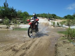 Off Road Baja Adventures - Day Tours