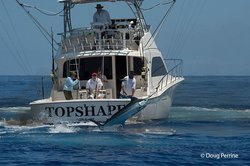 TOPSHAPE Kona Sports Fishing