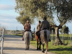 Activities Barbancho - Horseback Riding