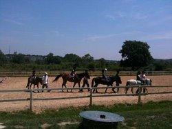 Alkuzu Riding School