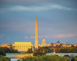 Washington DC (94695444)