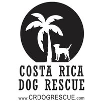 ‪Costa Rica Dog Rescue & Adoption‬