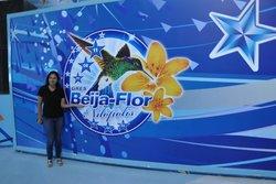 Escola De Samba Beija Flor De Nilopolis