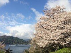 Suwazaki Nature Resting Grove