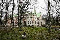 Дворец Козел-Поклёвских