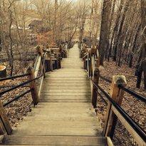 Mount Baldhead Park