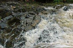 Arung Jeram Sungai Kambang