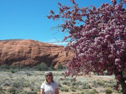 Spring in Snow Canyon