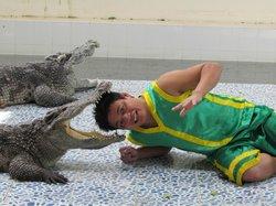 Baan chivit crocodile show