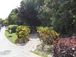 Walkway to Spa Suite Pool