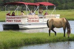 Captain Dan's Around the Island Tours