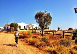 Bike and Hike Escapes