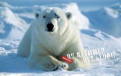Svalbard Booking