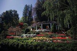 Crystal Hermitage Gardens