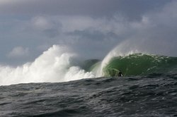 Lyndon Wake Surf School