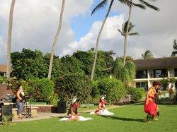 Hawaiian show monthly & Mai Tai Party
