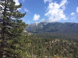 Idyllwild Nature Center