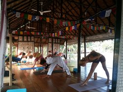 Orion Healing Center Yoga