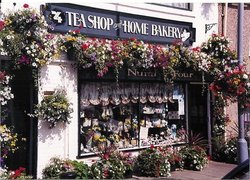 Number Four Teashop