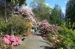 Whitney Gardens and Nursery