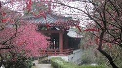 Xiandu Scenic Aera of Lishui