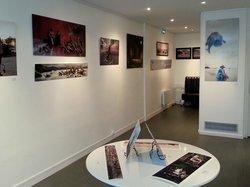 Le Paris Urbain Art Gallery