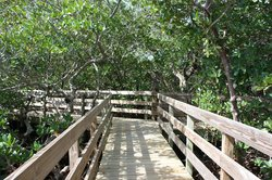 Coquina Baywalk