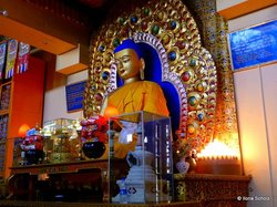 Dalai Lama Temple Complex