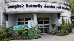 Bangkok Butterfly Garden and Insectarium