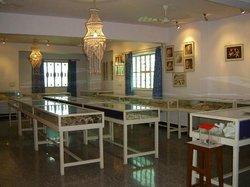 Alice Garg National Seashells Museum