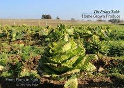 The Friary Farm
