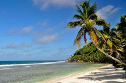 Anse Capucins Beach