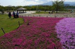 Kanagawa Prefectural Sagamisansen Park