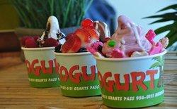 Yogurt Hut