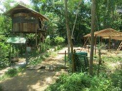 Comunidad Inti Wara Yassi