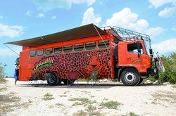 Jaguar Expeditions