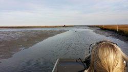 Chesapeake Bay Adventures