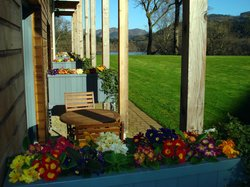 Woodland rooms and patio